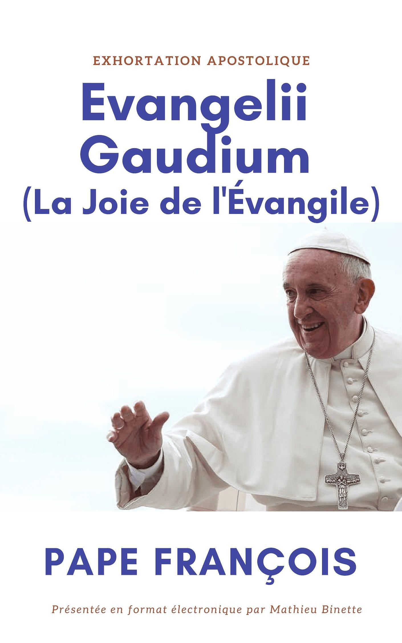 Télécharger Evangelii Gaudium (La Joie de l'Amour) en format électronique