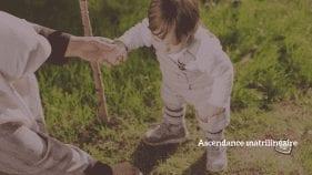 ascendance matrilinéaire