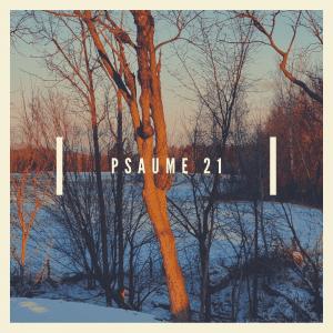 psaume 21 trip hop